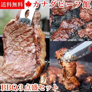 3〜4人前 BBQ3点盛セット1.1kg バーベキューセット サーロイン ステーキ バーベキュー 肉 アウトドア 食材 BBQ パーティー キャンプ グランピング バーベキュー 肉 セット 材料 贈り物 ギフト