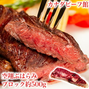ハラミ 牛ハラミ 焼肉 焼き肉 やわらか ハラミステーキ バーベキュー 肉 BBQ 食材 キャンプ 塊肉 かたまり肉 冷凍食品業務用 牛ハラミブロック 0.5-0.6kg台 お取り寄せグルメ お取り寄せ グルメ