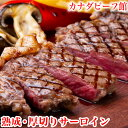 ステーキ サーロイン ステーキ肉 バーベキュー 肉 熟成肉 ギフト BBQ 食材 キャンプ 赤身 ギフト 冷凍食品 熟成・厚切りサーロインステ…