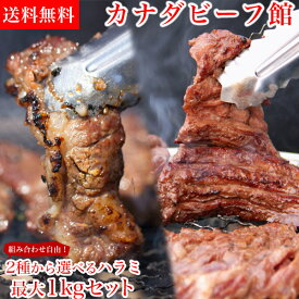 ハラミ 1kg プレゼントあり!最大1kg組み合わせ自由!2種から選べるはらみセット ハラミ 1kg 肉 セット BBQ バーベキュー 焼肉 焼き肉 牛肉 パーティー タレ漬け やわらか アウトドア 食材