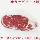 ローストビーフ用 牛肉 ローストビーフ ブロック 塊肉 ステーキ肉 サーロイン バーベキュー 肉 BBQ 食材 キャンプ 業…