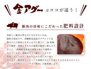 送料無料金アグーしゃぶしゃぶセット(4〜5人前)