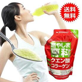 燃やしま専科 アップル風味 500g スポーツドリンク 粉末 パウダー 粉 クエン酸 ドリンク ダイエット サプリメント マルチビタミン 500ml