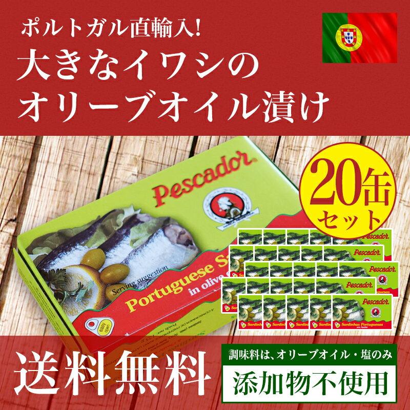 【送料無料】大きなイワシのオリーブオイル漬け125g≪20個セット≫【あす楽対応】