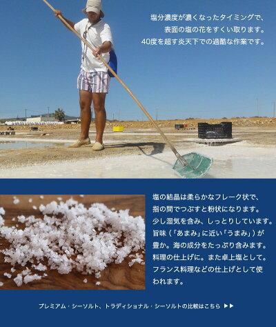 プレミアム・シーソルト〜塩職人が収穫した天日塩〜(500gお徳用パック)【あす楽対応】