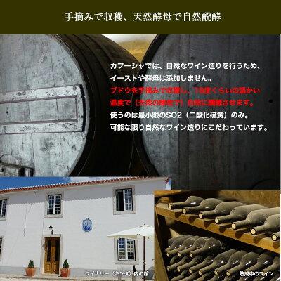 【よりどり6本以上送料無料】フォッシル・ビオワイン[2015]【赤】750ml【ビオワイン】