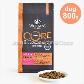 ウェルネス コア (高たんぱく質・穀物不使用) 小型犬全年齢用-800g ドッグフード プレミアム