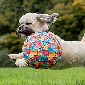 ドッグ・バルーン 【数量限定品】 犬のおもちゃ ドッグトイ ボール