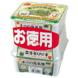 【ヤマヒサ】ペティオ ネコの元気草 3P★ペット用品※お取り寄せ商品【RCP】【02P03Dec16】