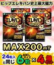 なんと!あの【ピップ】ピップエレキバンMAX200 お試しサイズ 合計24粒セット(6粒×4個) が「この価格!?」 【RC…