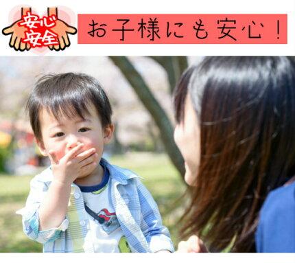 送料無料食品添加物無添加ドライマンゴー500g(100gx5袋)セブ島産メール便【pa】