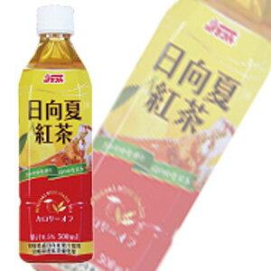 宮崎県農協果汁 日向夏紅茶 PET500ml×24本入