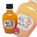 【1ケースで1送料】早和果樹園飲むみかん瓶200ml×48本入(有田みかん100%ストレートジュース)