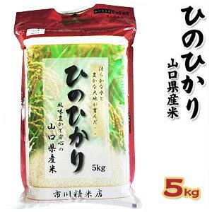 【山口県産米】【市川精米店】 ひのひかり 5kg