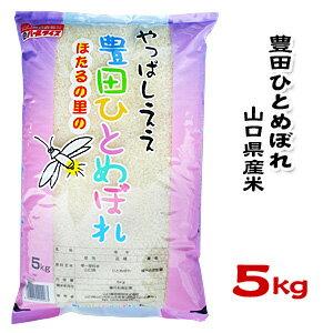【新米】【山口県産米】【農協直販】 豊田 ひとめぼれ 5kg