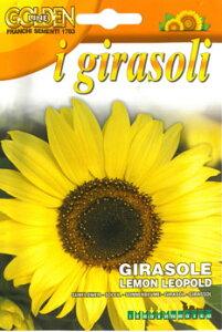 【イタリアの草花の種】ヒマワリ・LEMON LEOPOLD[329/7]レモンイエローの夏らしいひまわり 向日葵の種