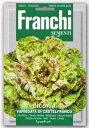 【イタリアの野菜の種】 Franchi社リーフチコリー・VAR. CASTELFRANCO カステルフランコ