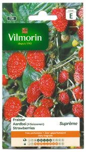 【フランス野菜の種】四季なりイチゴDES4 SAISONS・Supremeストロベリー【V-736】VILMORIN社-いちごの種