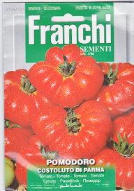 【イタリア野菜の種】イタリアントマト・COSTOLUTO DI PARMA《固定種/支柱・必要》 106/121