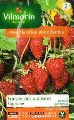 VILMORIN社-フランス野菜の種【イチゴ】四季なりイチゴ・Supremeストロベリー【V-strawberry1】740
