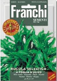 FRANCHI社-イタリア野菜の種 ワイルドルッコラセルバチカ・A FOGLIA D'ULIVO【115/4】