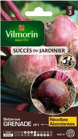 Vilmorin社-フランス野菜の種 ビーツGrenade HF1 【V-Beets2】V-504