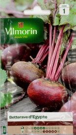 Vilmorin社-フランス野菜の種 ビーツd'Egypte 503