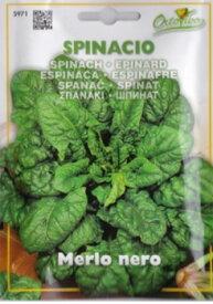 【イタリアの野菜の種】 ホウレンソウ・Merlo nero[cod.5971]※パッケージが変更になる場合等もございます。