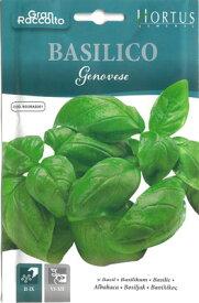 【お得な大袋イタリアの野菜の種】 バジル・ジェノヴェーゼ 固定種 BGOBAS001【ラッキーシール対応】
