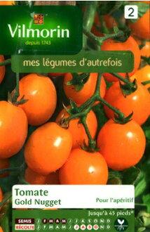 New VILMORIN公司-法国蔬菜的种西红柿、Gold Nugget