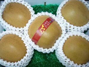 香川産「さぬきゴールド」6Lサイズ5玉入り