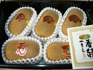 香川産キウイ「香緑スイート16」3Lサイズ6玉入り