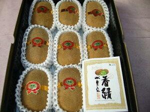 香川産キウイ「香緑スイート16」3Lサイ12玉入り