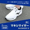Maximizer19 01