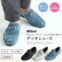 Wilson 8804 01