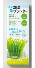 【送料無料】エコ加湿プランター 電源不要 エコ 自然気化 ペーパー 加湿器 コロナ対策 ウイルス対策