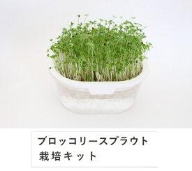 【全国送料無料】グリーンフィールド ブロッコリー(スプラウト)栽培キット×10個 有機種子 B056 ホワイト