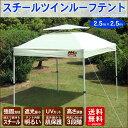 タープテント タープ テント ワンタッチ 2.5m イベント UV加工 明るい スチール ツインルーフ レジャー【送料無料】