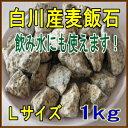 国産(美濃白川産)麦飯石、Lサイズ(粒径15mm〜25mm程度)、1kg【飲料水にも使えます】【3kg以上のご注文でネット1枚プレゼント(色・…