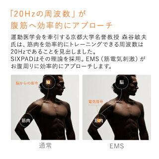 「20Hz」の周波数が腹筋へ効率的にアプローチ