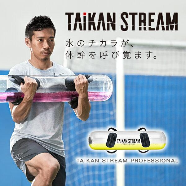 タイカンストリーム プロフェッショナル TAIKAN STREAM PROFESSIONAL 【ポイント10倍】 【メーカー公式店】 MTG 体幹 トレーニング 自宅で楽しくトレーニング P10