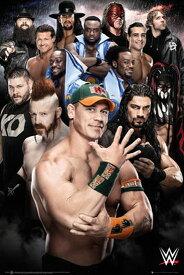 WWE 2016  ポスター【SP-1349】