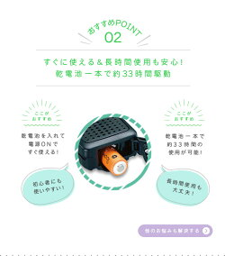 ic-4300-05