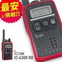 トランシーバー アイコム IC-4300R レッド ( 特定小電力トランシーバー インカム IC-4300L,IC-4350互換有 ICOM 国内製…