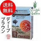 【グリーンノート】グリーンノートヘナオーガニータディープブラウン100g(白髪染め&トリートメント)