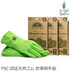 イフユーケアハウスホールドグローブゴム手袋購入金額別特典あり正規品無添加オーガニック天然ナチュラルノンケミカル自然ヴィーガンIfYouCare