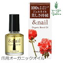 Andnail oil