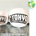 東京粉末 BOMB BIG ボム ビッグ チョーク ボールボルダリング クライミング 正規品 110g チョークボール ロッククラ…