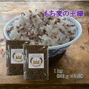 もち麦の王様(ダイシモチ玄麦)1kg(500g×2袋)紫もち麦国産1kg メール便送料無料 玄麦 β-グルカン コーシャ認証
