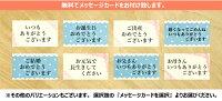 ■特大企画■お買い物マラソン開催!(9/21-26)MOGU抱きまくらスネイルボディピロー抱き枕モグ